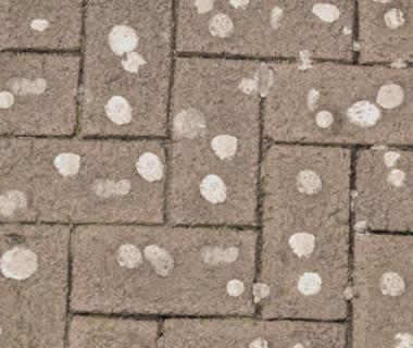 Защита тротуаров